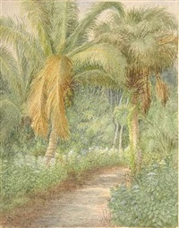 palm forest by laura woodward