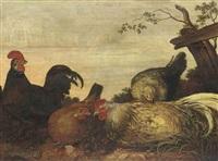 a cockerel and hens in a landscape by gillis claesz de hondecoeter