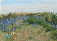 lupiner i højen klitplantage by ella heide