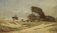 lavandière dans le vent des landes by françois edouard bournichon