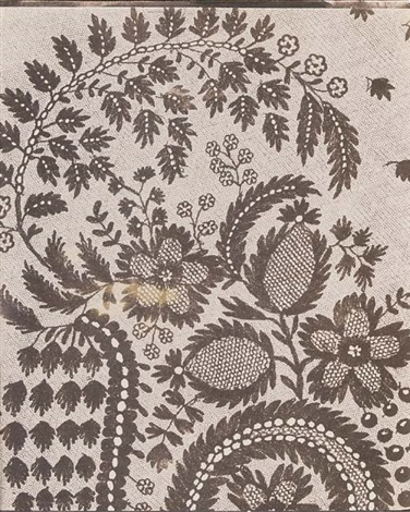 lace by william henry fox talbot