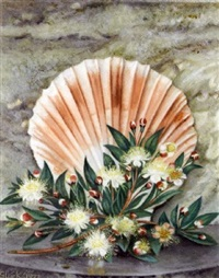 still life with a scallop shell and blossom by gluck (hannah gluckstein)
