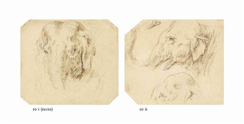 head of an elephant recto study of a hounds head verso two studies of an elephants head in profile 2 works by stefano della bella
