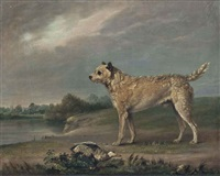 a favourite terrier by edmund bristow