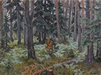 forest in the evening by anatoli dmitriewitsch kaigorodoff