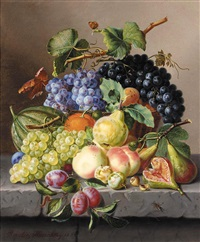 trauben und früchte auf einer tischkante (grapes and other fruit on a ledge) by amalie kaercher