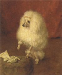portrait of a poodle by frances c. fairman