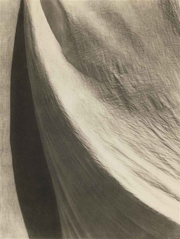 untitled (texture and shadow) by tina modotti