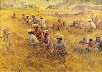 harvest by s. toyo