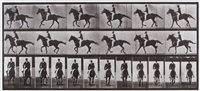 horse cantering saddled clothed male rider, plate 618 (from animal locomotion) by eadweard muybridge