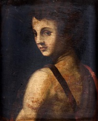 saint jean baptiste by pontormo (jacopo carucci)