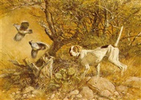 pointer and gambels by robert kennedy abbett