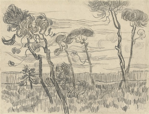 six pines near the enclosure wall by vincent van gogh