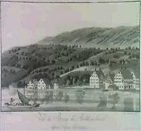 vue de bourg de richtenschweil by johs. hofmeister