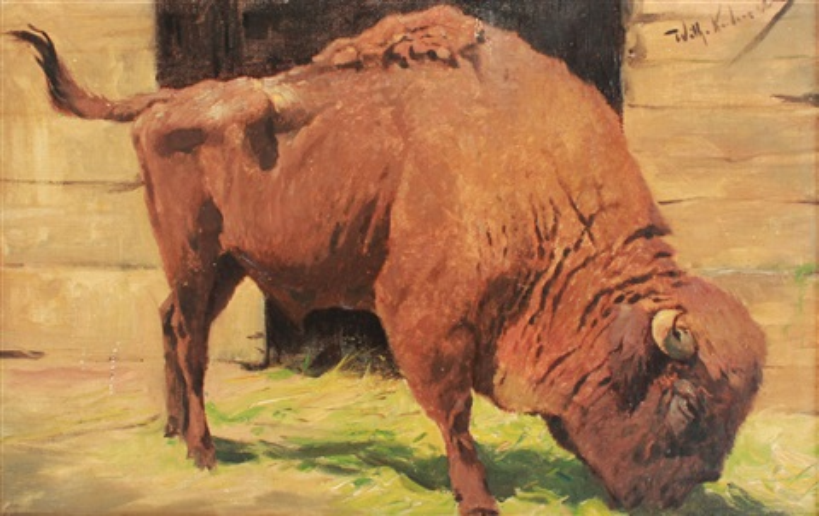buffalo by wilhelm friedrich kuhnert