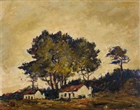 cottages with stone pines, cape by nita spilhaus