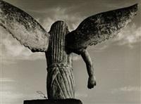 el ángel exterminador by mariana yampolsky