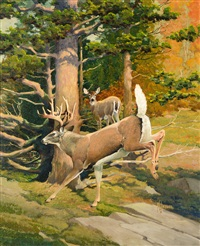 the white-tail deer - aristocrat of american game by francis lee jaques