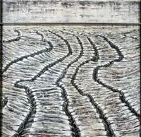 scratched landscapes (de la serie organic landscapes) by fernando canovas