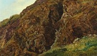 bjergskrænt, zermatt by janus andreas barthotin la cour