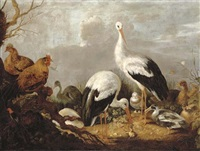 storks, mallards, chickens, a heron, a frog and other birds in a river landscape by gysbert gillisz de hondecoeter