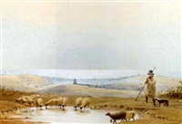 a shepherd and his flock on the south downs above brighton by frederick william woledge
