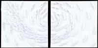 vortice bianco (dittico) by riccardo gusmaroli