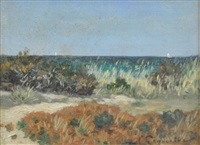 plants on the beach by auguste pegurier