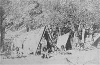 zigeunerlager im banat by andreas groll