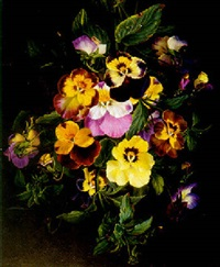 bouquet of pansies by ange louis guillaume lesourd-beauregard