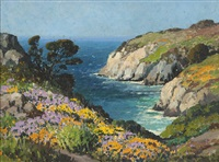 blooming wildflowers along the carmel coast by carl sammons
