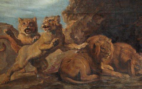 étude de lionnes et de lions study by frans snyders