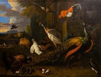 paisaje con aves by melchior de hondecoeter