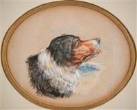 portrait of a dog in profile by albert bierstadt