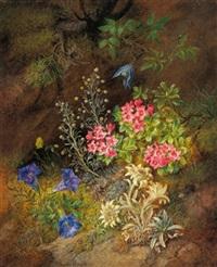 stilleben mit alpenblumen - enzian, edelweiß und almrausch by theodor petter