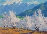 wildflowers, palm springs ca by frederick almond zimmerman