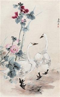芙蓉鹅趣 立轴 设色纸本 (goose and cottonrose hibicus) by wang xuetao