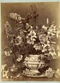 composition végétale by charles aubry