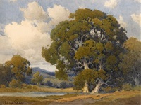 oaks, marin county by percy gray