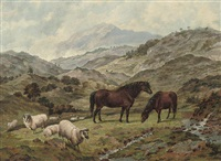 scotch ponies and sheep in a landscape by dean wolstenholme the elder