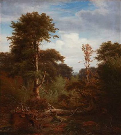 forest scene with tall trees by peter johann p raadsig