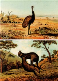 emus in a landscape by australian school (19)