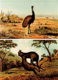 emus in a landscape by australian school (19)