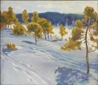 aurinkoinen talvipäivä - solig vinterdag by alexander rapp