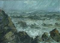 storm by napoleon alekov