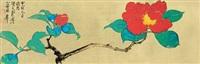 牡丹图 (peony) by xie zhiliu