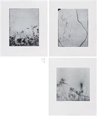 weed series wv008, wv010, wv029 (3 works) by min byung hun