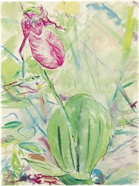ladyslipper by billy sullivan