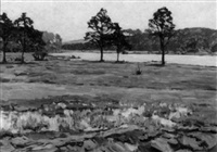waldsee bei joachimstal (uckermark) by ernst faendrich