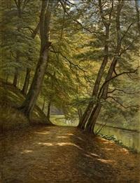 solbelyst bokskog med å och vandringsstig by august jacobsen